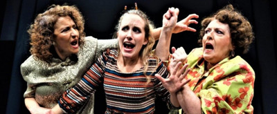 BWW Review: WHERE THERE'S A WILL at Theatre Three