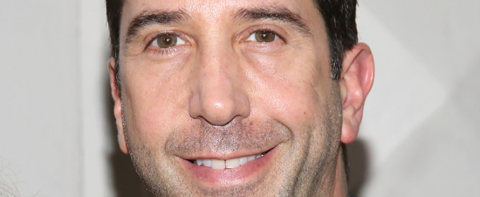 David Schwimmer to Helm PLANTATION! Premiere as Part of Lookingglass Theatre's 30th Season
