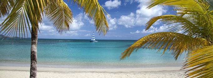Health and Yoga Guru Koya Webb Hosts Wellness Retreat at U.S. Virgin Islands, 11/19-23