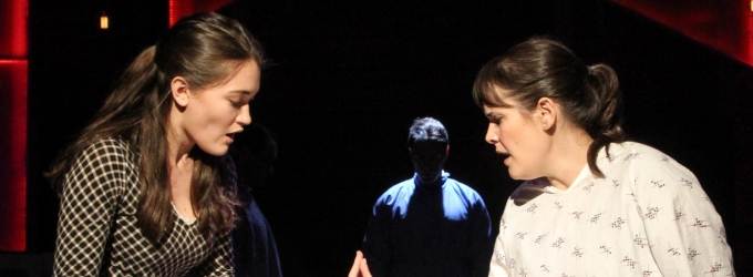 BWW Review: NEXT TO NORMAL at Pico Playhouse