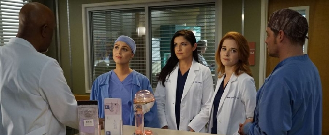 BWW Recap: GREY'S ANATOMY Masters the Term 'Bittersweet'