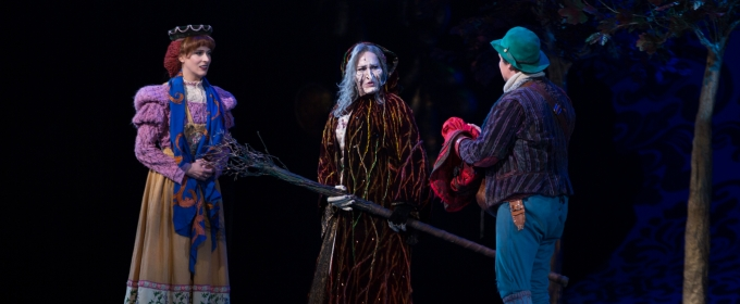 Photo Flash: First Look at Emily Skinner, Nick Bailey, Jeremy Hays and More in INTO THE WOODS at TUTS