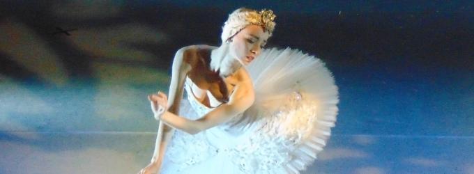 BWW SPOTLIGHT: Vienna Festival Ballet's Principal Female Dancer Emily-Joy Smith
