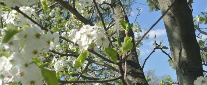 Summer Stages: Jaime's Long Island Spring/Summer Picks