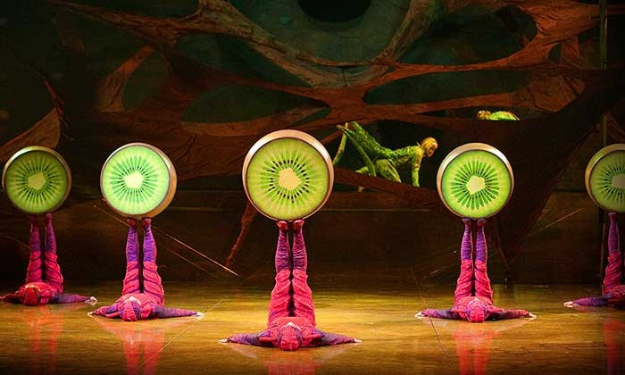 BWW Review: CIRQUE DU SOLEIL'S OVO at HEB Center In Cedar Park is Family Friendly Thrills and Laughs