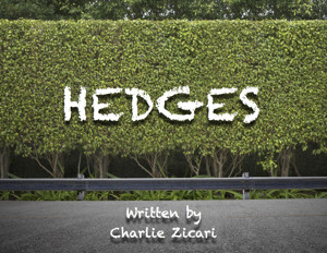 Evan Roe, Michelle Duffy & More Will Lead Reading of Charlie Zicari's Screenplay HEDGES This Summer