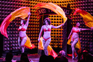 TWIN PEAKS BURLESQUE to Sizzle at Joe's Pub This Month