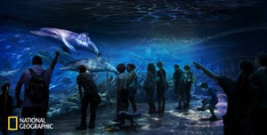 National Geographic ENCOUNTER: OCEAN ODYSSEY to Open in Times Square Next Fall