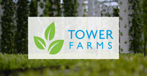Angel Light Communications Partners with Red Giant Union to Spread Tower Farm Tech to Entertainment Industry