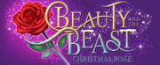 Jonah Platt Will Star in BEAUTY AND THE BEAST: A CHRISTMAS ROSE in Pasadena