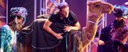 Photo Flash: Flat Rock Playhouse presents JOSEPH AND THE AMAZING TECHNICOLOR DREAMCOAT