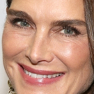 Brooke Shields to Guest Star in Season 19 of LAW AND ORDER: SVU Photo