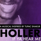 BWW Review: HOLLER IF YA HEAR ME at Kenny Leon's True Colors Theatre Company