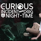 'CURIOUS INCIDENT, Starring Autistic Actor, Opens This Month at Syracuse Stage