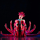BWW Review: MOMIX's OPUS CACTUS is a Revelation