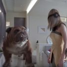 VIDEO: New INHUMANS Featurette Gives Fans First Look at IMAX Experience