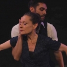 BWW Interview: Christine Dakin and Her Recent Dance Projects Photo