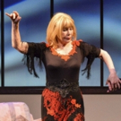 BWW Review:  SWIT Continues To Charm Audience In SIX DANCE LESSONS IN SIX WEEKS at Sh Photo