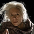BWW Review: WINGS, Young Vic