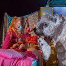 Photo Flash: Sneak Peek - Pins & Needles' THE BEAR to Growl at Waterside Arts Centre Photo