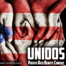 Chicago Talent to Unite for A Puerto Rico Benefit Concert