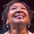 BWW Review:  Andrea Frierson's ME & ELLA Pays Tribute To Her Legendary Influence Photo
