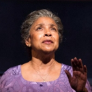 BWW Review: Phylicia Rashad Brilliant in HEAD OF PASSES Photo