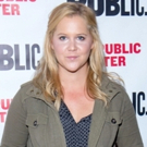 Breaking: Amy Schumer, Laura Benanti, Keegan-Michael Key, and Alan Tudyk to Lead Steve Martin's METEOR SHOWER on Broadway