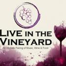 LeAnn Rimes Among Artists Set for 'Live In The Vineyard' Music Festival