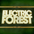 Electric Forest & More Premiere Video Message For National Suicide Prevention Week Photo