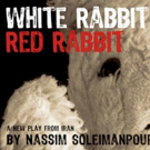 Theatre Entertainment Meets Social Experiment with WHITE RABBIT RED RABBIT