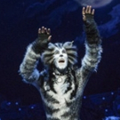CATS Dances Into Stockholm This Fall! Photo