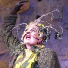 BWW Review: Village's INTO THE WOODS Has Moments in the Woods but No Connections