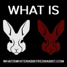 Denver Theatre Company Goes Down the Rabbit Hole in WHITE RABBIT RED RABBIT