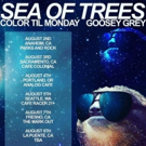 Alternative Rock Band Color Til Monday Announces Dates with Sea of Trees & Goosey Grey