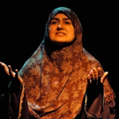 Rohina Malik's THE MECCA TALES to Make NYC Premiere at The Sheen Center Photo