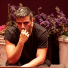 Public Theater Cancels Saturday Matinees of HAMLET for 'Welfare of Actors'