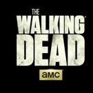 AMC Announces THE WALKING DEAD Multi-Weekend Marathon Starting 8/20
