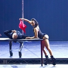BWW Previews: POLE SHOW LA at House Of Blues Las Vegas