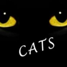 CATS Musical To Help SPCA