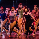 BWW Review: Alabama Talent Fills The Spotlight in A CHORUS LINE at Virginia Samford Theatre