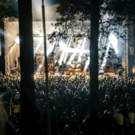 Alternative Music Festival to Take Place in One of the Oldest Forests in Europe