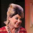 BWW Review: Take Your Wash to the Hudson and the HONKY TONK LAUNDRY