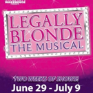 The Performer's Warehouse Is Going LEGALLY BLONDE This Summer