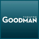 David W. Fox, Jr. Named New Goodman Theatre Chairman