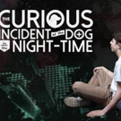 VIDEO: Watch Mickey Rowe, First Autistic Actor To Take The Lead In THE CURIOUS INCIDENT OF THE DOG IN THE NIGHTTIME, In Rehearsals