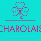 Ireland's Fishamble to Return to 59E59 Theaters with CHAROLAIS