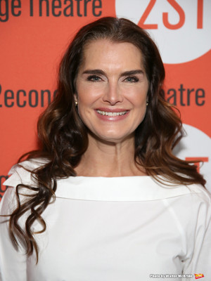 Brooke Shields Among Second Stage Theater's New Trustees