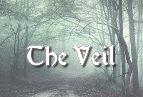 Conor McPherson's THE VEIL Opens Next Month at Town Players