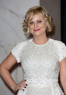 Amy Poehler & More to Bring New Comedy Series to Netflix
